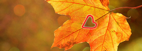 Coccole d'autunno